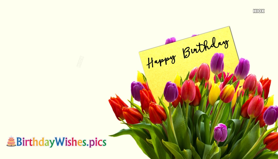 Happy Birthday Tulips Images